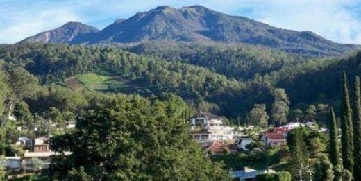 Nikmati Libur Panjang, 12 Mahasiwa Universitas Brawijaya Malang Dikabarkan Hilang di Gunung Lawu