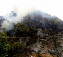 Kawasan Hutan Lembah Harau Limapuluh Kota Masih Terbakar, BPBD Kesulitan Padamkan Api