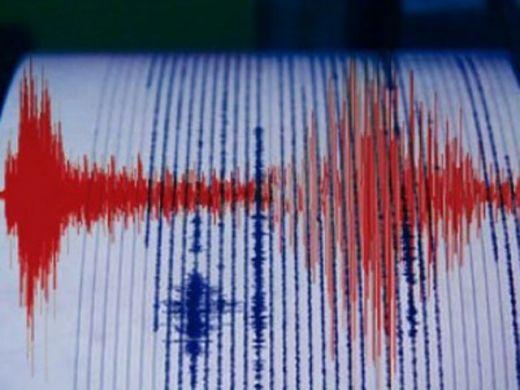 Lagi, Gempa Cukup Kuat Goyang Kabupaten Kepulauan Mentawai