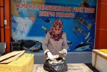 SKIPM: Pengiriman Hasil Perikanan Domestik Menurun Akibat Covid-19