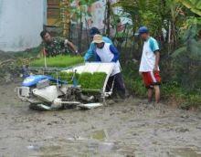 Dandim 0312/Padang Minta Anggotanya Dampingi Petani Lakukan Swasembada Pangan