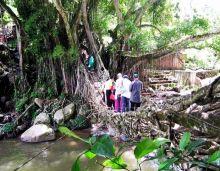 78 Ribu Wisatawan Kunjungi Pesisir Selatan Selama Liburan, Terbanyak ke Pantai Carocok