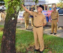 sidak-hari-pertama-kerja-walikota-padang-temukan-benalu-dan-tali-temali-di-pohon-pelindung