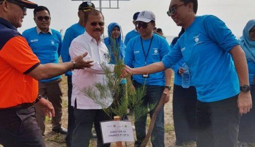 Minimalisir Dampak Tsunami Sepanjang Pantai Ketaping Ditanami Pohon Cemara Laut