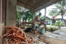 Lebih Murah dari Harga Daring, Ginseng Kuning Pesisir Selatan Dihargai Rp7.000 per Kilogram