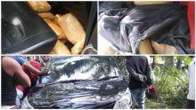 BNN Tangkap 100 Kg Ganja di Pasaman, Dua Pelaku dalam Kondisi Luka Tembak Kabur Masuk Hutan