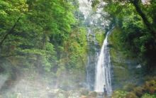 Nagari Siguntur Tuo Pessel, Daerah Penghasil Gambir dengan Air Terjun Sarasah Nan Indah