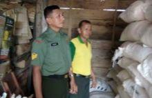 Putus Rantai Mafia, Babinsa Koramil 05/Batang Kapas Pesisir Selatan Pantau Kios Pupuk Bersubsidi