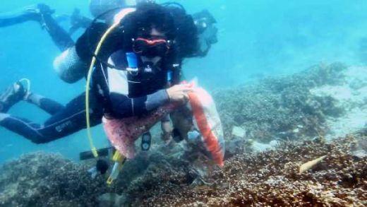 Kado HUT ke-74 RI, Penyelam Sumbar Keruk Sampah di Bawah Laut