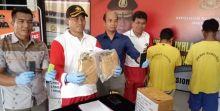 Kirim Ganja Lewat Ekspedisi, 2 Kurir Narkoba di Pariaman Ditangkap Polisi