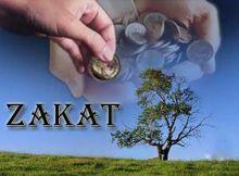Baznas Kabupaten Solok Salurkan Zakat Untuk Guru Pondok Pesantren