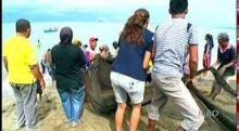 Tukang Pukek Pantai Padang Dukung Rencana Wisata Elo Pukek