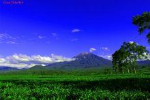 Pendakian Gunung Kerinci Diusulkan Masuk 10 Destinasi Wisata Indonesia