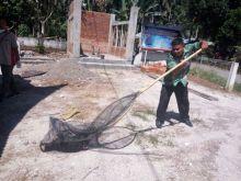 Anjing Liar Dibasmi, Distanakhut Padang Pariaman Respon Cepat Laporan Masyarakat