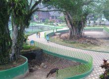 Wajib Patuhi Prokes, Objek Wisata di Bukittinggi Ini akan Digratiskan Selama Dua Hari
