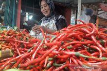 Harga Cabai Merah di Pasar Raya Padang Rp16.000/kg