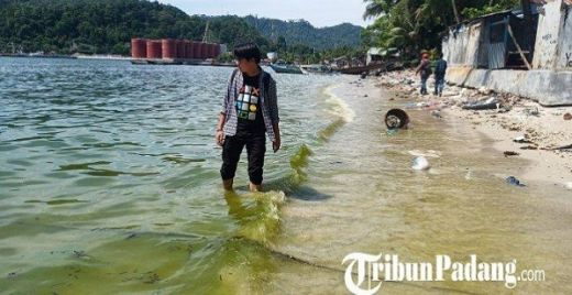 Diduga, Inilah Penyebab Air Laut di Padang Berubah Jadi Hijau