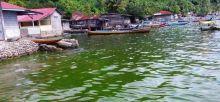 Air Laut di Pantai Padang Berubah Jadi Hijau