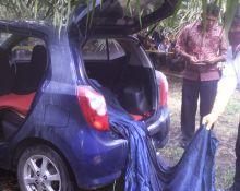 Mayat Terbungkus Kain Ditemukan Dalam Mobil Agya di Kebun Sawit Pasaman Barat