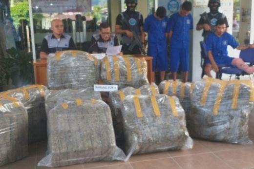Bawa 183 Kilo Ganja dari Sumut untuk Diedarkan di Sumbar, Tiga Pelaku Ditangkap BNN