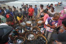 Sejak Wabah Covid-19, Ribuan Nelayan di Padang Kurangi Frekuensi Melaut