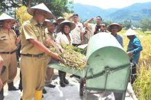 Panen Padi di Bungus, Walikota Padang Bertekad Tingkatkan Swasembada Beras