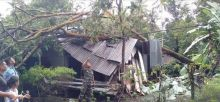 Hujan Badai, Rumah Warga Sei Geringging Roboh Ditimpa Pohon Petai