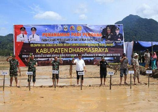Bupati Dharmasraya dan Komandan Korem 032 Lakukan Tanam Padi Perdana di Kampung Surau